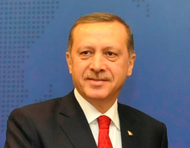Building on Division: Erdogan's Presidential Ambitions